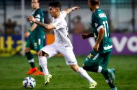Santos vs Chapecoense Football Tips